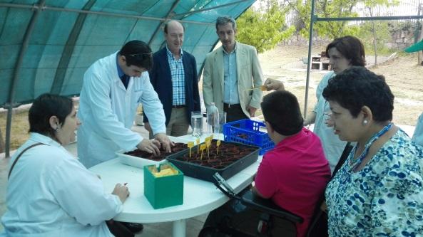 Fundación Globomedia y Grupo envera intercambian visitas