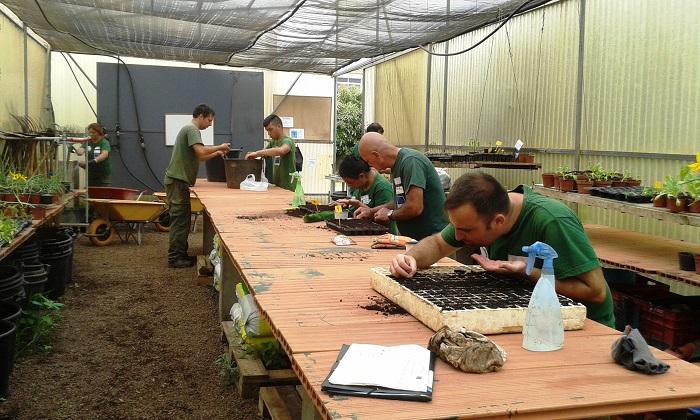 Finaliza con éxito el proyecto formativo Semilla 14/15 desarrollado por Envera en Tenerife