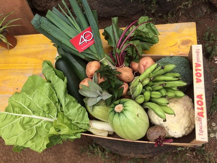 Envera dona más de 1.500 kilos de alimentos ecológicos a Cruz Roja