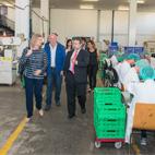 Los candidatos de PP al Ayuntamiento de Madrid visitan el nuevo centro de Grupo envera en Barajas
