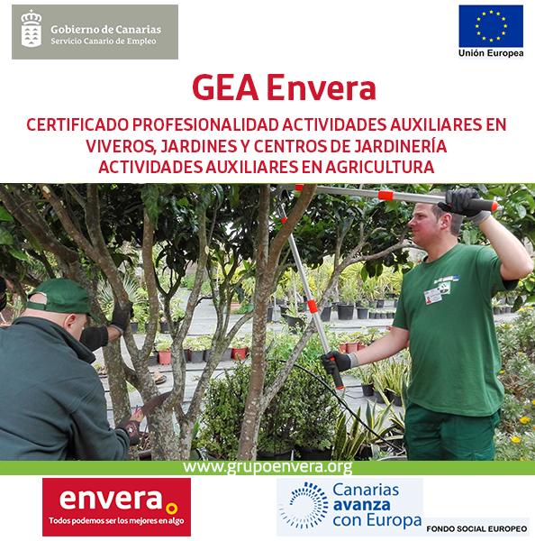 Gea Envera 2020
